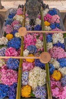 Colorful flower chozuya