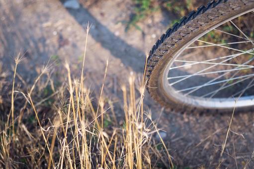自行车轮胎6