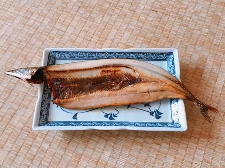 Pacific saury opening