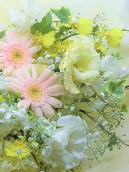 A bouquet of gentle springs
