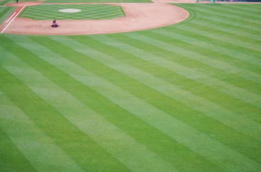 Watching a baseball field