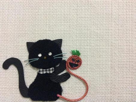 黑猫和南瓜E