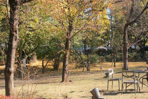 도쿄도 정원 미술관