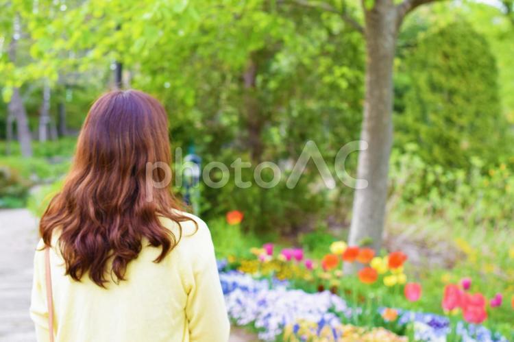 花壇の傍を歩く女性の後姿の写真