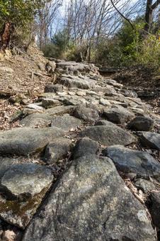 Tsujiko Valley Hiking Ishimichi