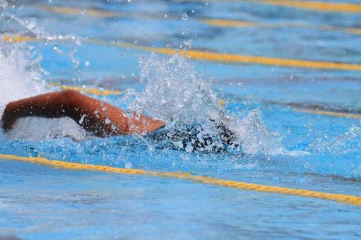 水泳の写真素材|写真素材なら「写真AC」無料(フリー)ダウンロードOK