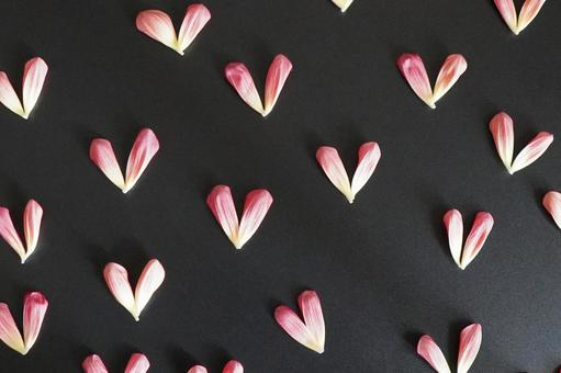 [Image background] Petal heart d