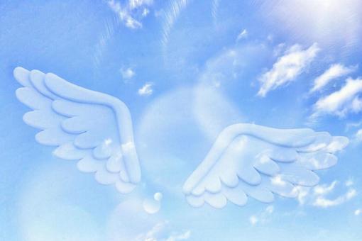 하늘 날개 비상 자유롭게 날개 짓 날아 오르는 이미지