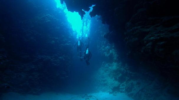 Diving in the trench