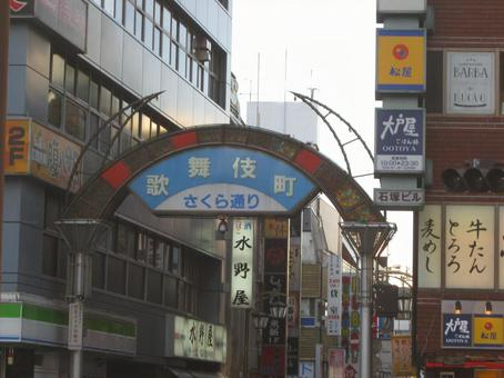 Kabukicho Sakura Avenue