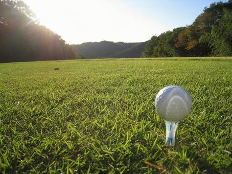 Golf course / Golf ball / Tea up