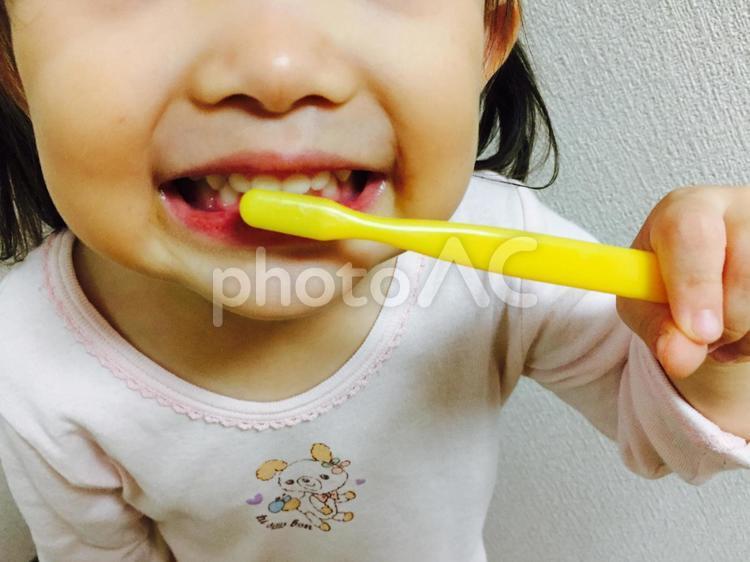 歯磨きをする女の子1の写真