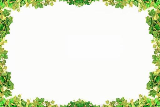 Plant frame 1