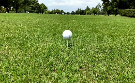 Tee up a white ball in the teeing area