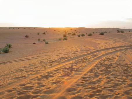 Middle East Desert Drive