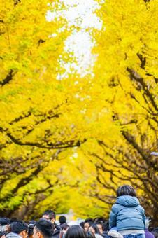 Shrine of the Jingu Outer garden Ichigo back row of children of a row of trees