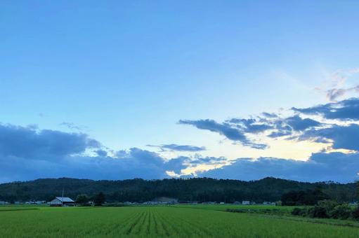 논과 하늘
