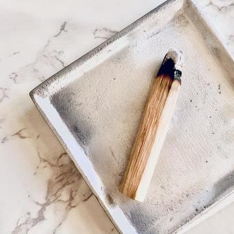 Photo of Palo Santo