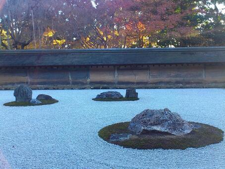 龍安寺的岩石花園