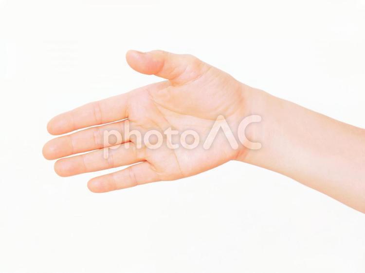 手だけのシリーズ 20の写真