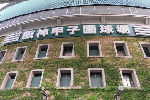 한신 고시엔 구장 전국 고교 야구 선수권 대회 2