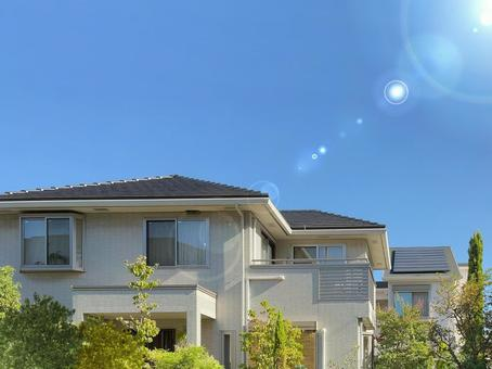 Summer sunshine residential detached cityscape