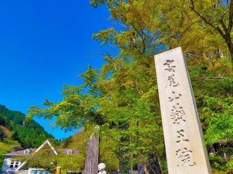 카오산 신록의 清滝 역전