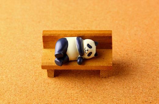 Panda in the evening