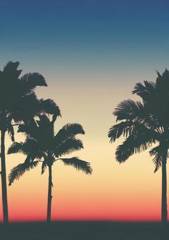 Sunset 05