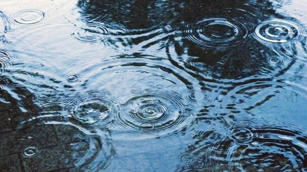 地面に広がる雨の足跡 #2 - No: 222526|写真素材なら「写真AC」無料(フリー)ダウンロードOK