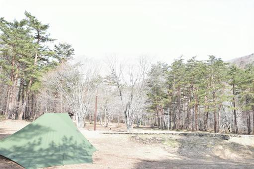 Camp Forest Tarp Mountain