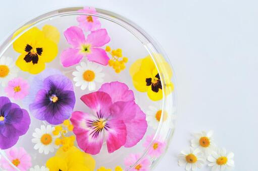Full of floating flowers and three chamomile flowers