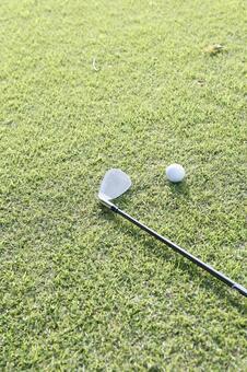 Grass club and golf ball 14