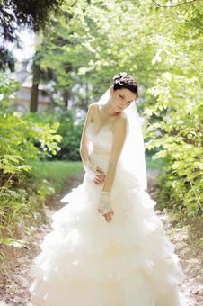 婚礼366