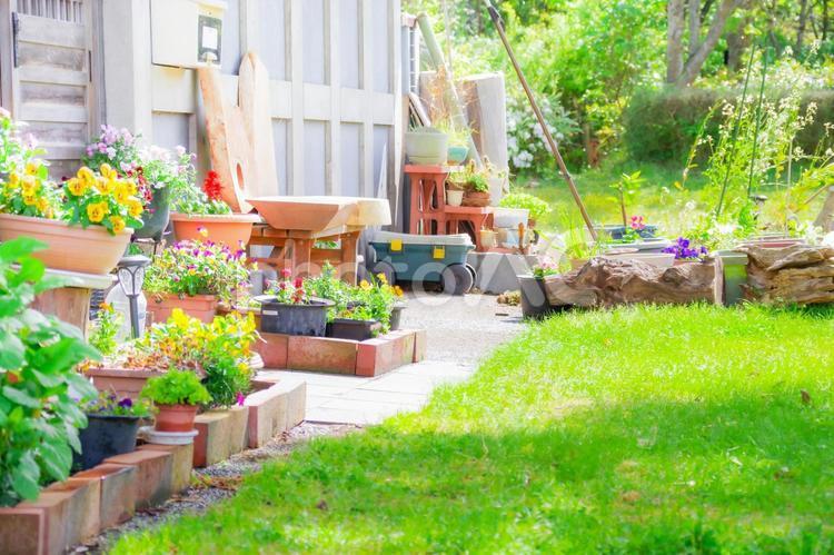 緑のあふれるガーデン 庭の写真