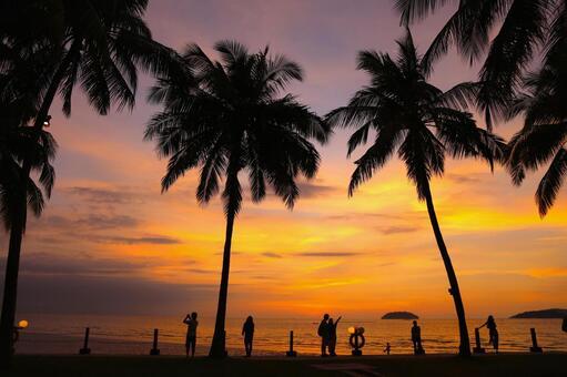 Beach resort 292