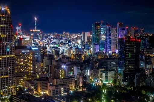 도쿄 타워에서 보이는 도쿄 야경