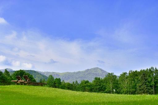 Grassland bench and blue sky