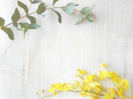 Eucalyptus leaf and Oncidium frame