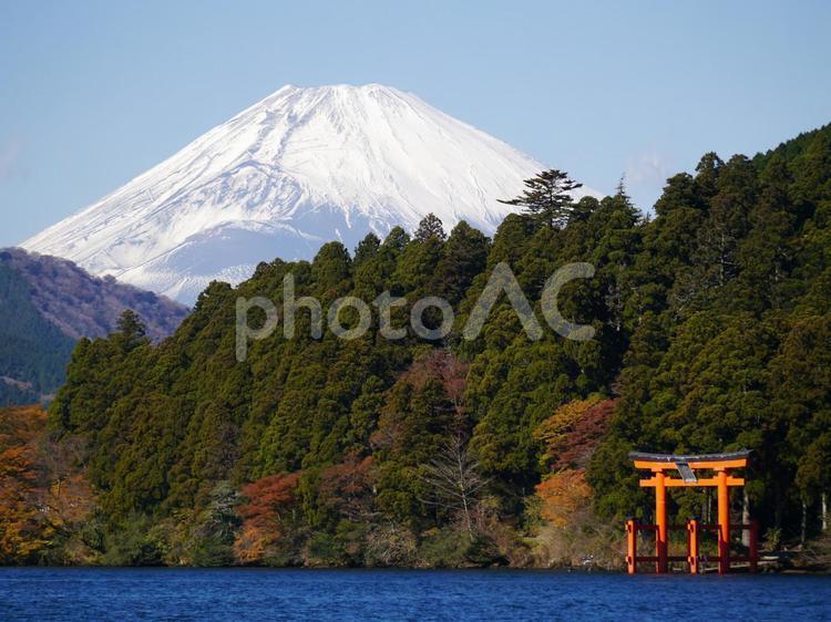 富士山と鳥居の写真