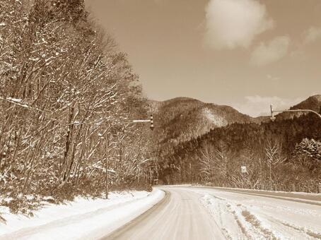 早期的冬季路(棕褐色)
