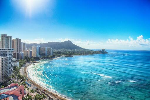 하와이 여행