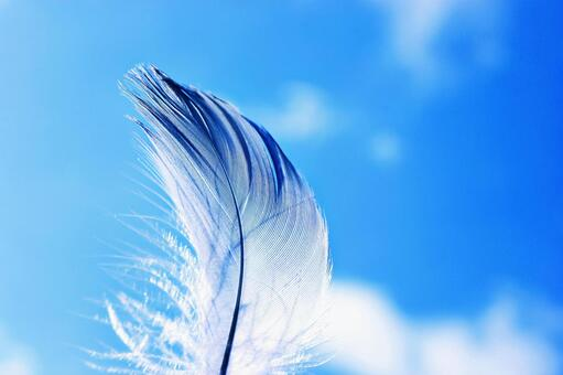 Blue sky and wings 1