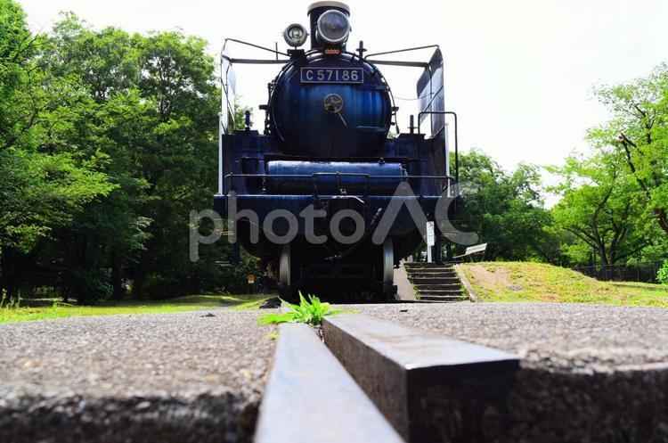 【東京・小金井公園】蒸気機関車・SLの写真