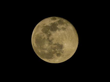 황금 보름달