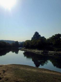 Okayama Castle silhouette over the river (vertical)