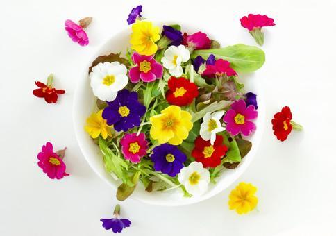 식용 꽃 샐러드 _15