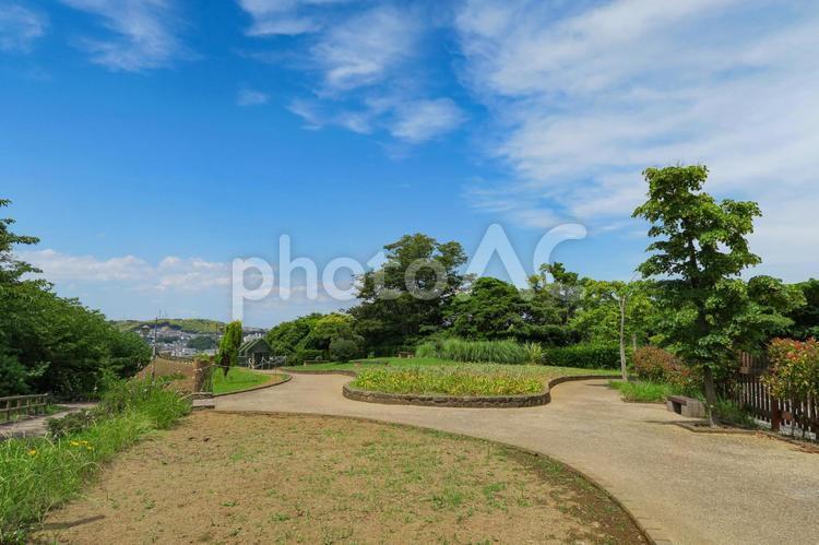 青空と公園の写真