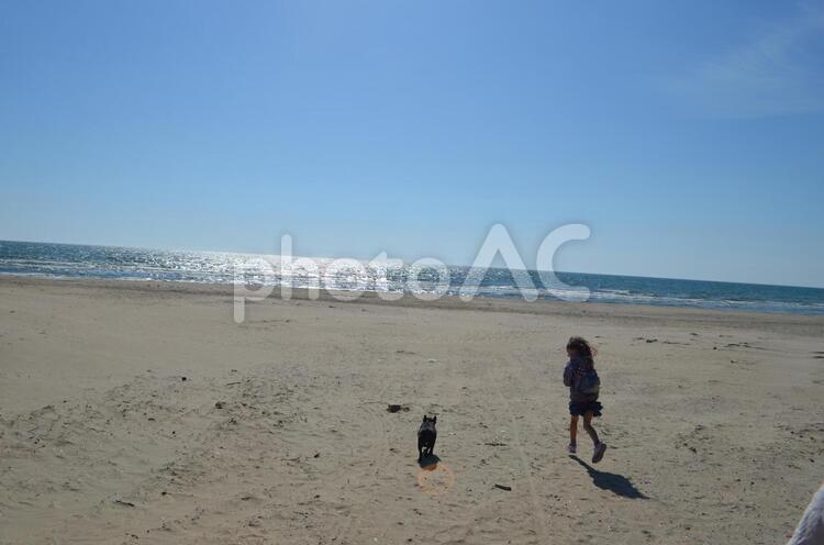 海辺を走るフレンチブルドッグと女の子の写真