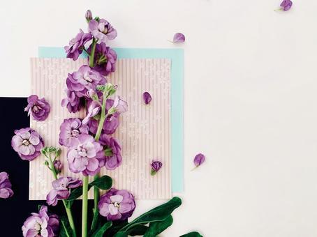 日本背景下的紫色的小花